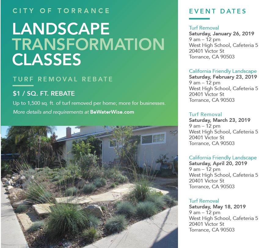 Landscape-Transformation-Program Web Picture